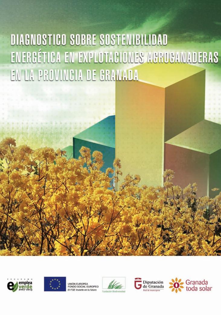 Pub Diagnosticosobresostenibilidadenergetica Granada Energia
