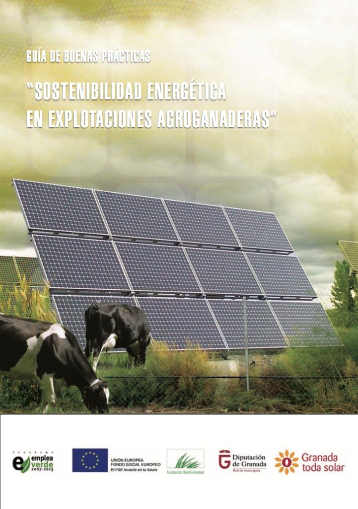 Pub Guiabuenaspracticas Granada Energia